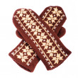 Foto de Stock  : Brown mittens