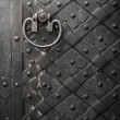 Black door with rivets — Stock Photo #24421971