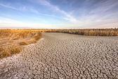 Agrietado suelo seco — Foto de Stock