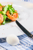 Shrimps on plate and seashell — Stock Photo