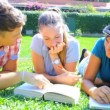 Young man helping two female students — Stock Video #40726103