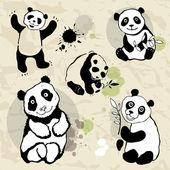 Panda's-set. — Stockvector