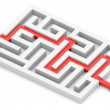 Red path across labyrinth — Stock Photo #24970343