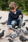 喂鸽子的小女孩 — 图库照片