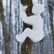 Glare from the snow man crawling on a tree — Stock Photo