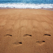 Human foot prints in the sand — Stock Photo
