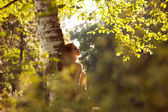 Happy young woman standing near birch — Stock Photo