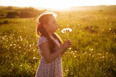 Girl blowing a bouquet of dandelions — Stock Photo