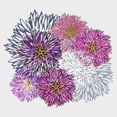 抽象翠菊花卉图案 — 图库矢量图片