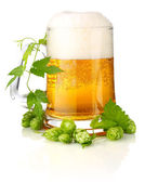 Glass beer with rich and aromatic hop — Stock Photo
