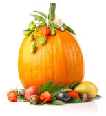 Pumpkin with fruits and flower — Stock Photo