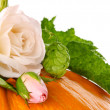 Still life of pumpkin flower and leaf — Stock Photo #12786444