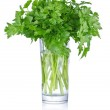 Fresh bunch parsley in glass — Stock Photo #25384481