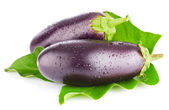 Eggplant with green leaf — Stock Photo