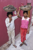 Dalit Boys Collecting Fuel — Stock Photo