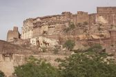 Rajput Fort — Stock Photo
