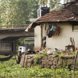 Kerala living — Stock Photo