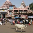 Stock Photo: Jagannath Hindu Temple