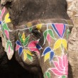 Foto de Stock  : Painted Elephant