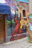 Colourful Murals of Valparaiso — Stock Photo