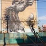 Murals of San Miguel — Stock Photo #47856129