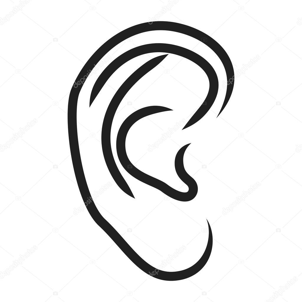 The human ear — Stock Vector © nikolae #18670677