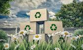 Cajas de cartón — Foto de Stock
