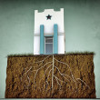 Small house with big roots — Stock Photo