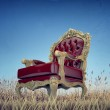 Regal armchair — Stock Photo #14054413