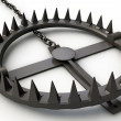 Bear trap — Stock Photo