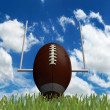 Football ball — Stock Photo #18606329