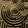 Stock Photo: Conceptual maze