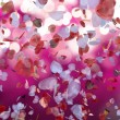 Stock Photo: Petal hearts