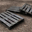 Stock Photo: Euro pallets