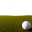 Stock Photo: Golfe course