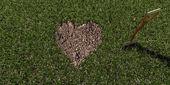 Kształcie serca gleby — Stok fotoğraf