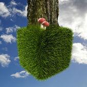 Cubo de hierba — Foto de Stock