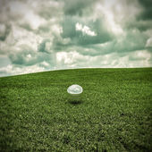 Chrome ball on green grass — Stock Photo
