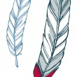 Feather illustration — Stockvectorbeeld