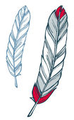 Feather illustration — Stock Vector