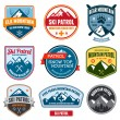 Ski badges — Stockvectorbeeld