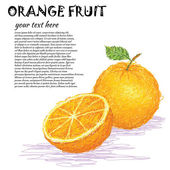 Orange fruit — Stock vektor