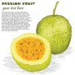 Passion fruit — Stock Vector #12364388