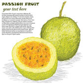 Passion fruit — Stock Vector
