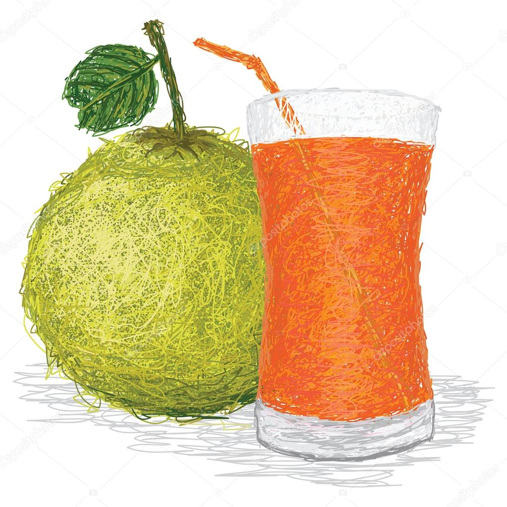Closeup illustration of fresh pomelo fruit and glass of pomelo juice isolated in white background. — Stock Vector #12362267