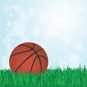 Baloncesto en pasto — Vector de stock