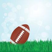 足球在草地上 — 图库矢量图片