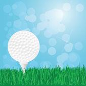 Golf ball on grass — Stock Vector