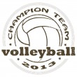 Volleyball label — Stock Vector