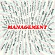 Management — Vettoriale Stock #24493077